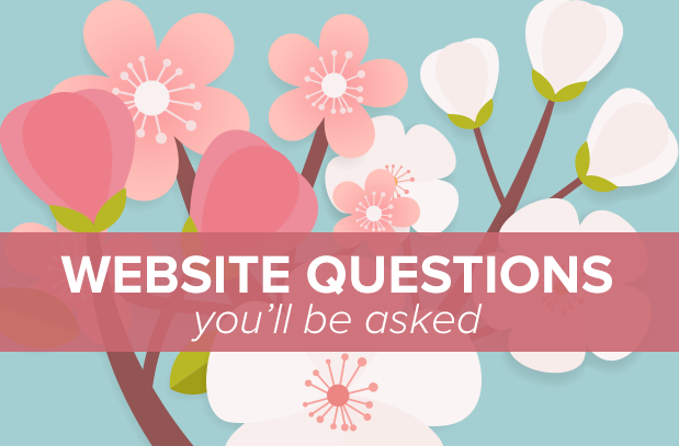 What questions you need to answer regarding your website